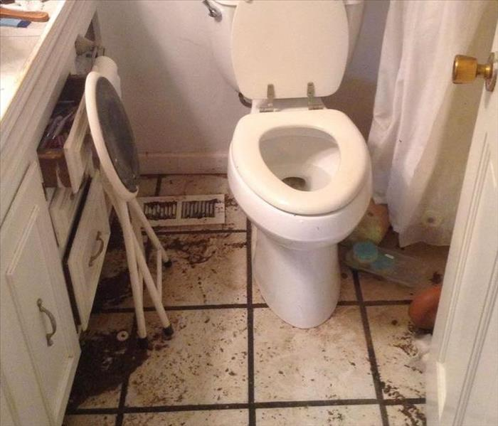 Sewage Damage to Master Bathroom in Ripley, MS Before