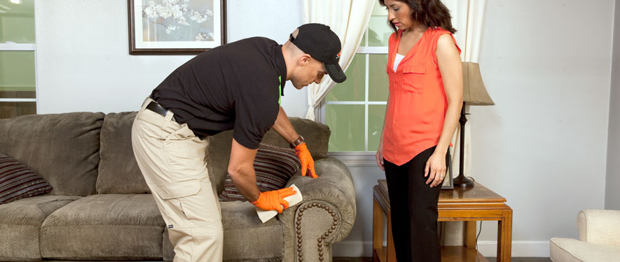 Corinth, MS carpet upholstery cleaning